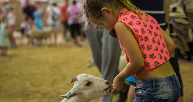 Annual Sydney Royal Easter Show held in Sydney