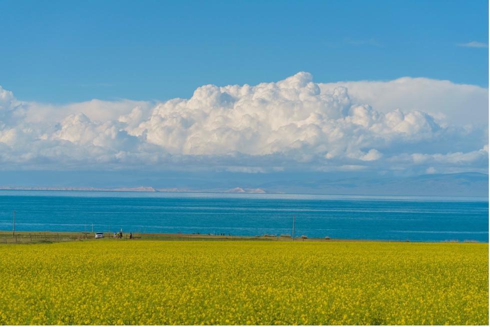 Enjoy stunning scenery along Qinghai Lake